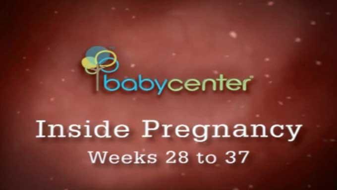 دوران بارداری کودک هفته بست و هشت تا سی و هفت