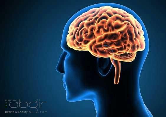 رژیم کتو موثر در عملکرد مغز
